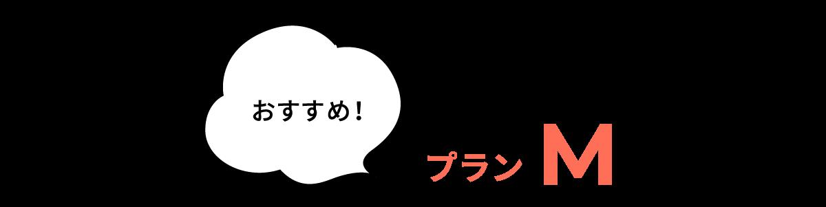 おすすめ プランM